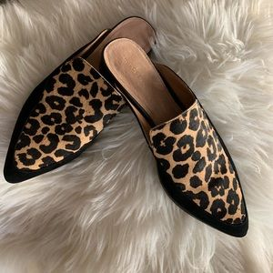 Halogen gently used Leopard mules